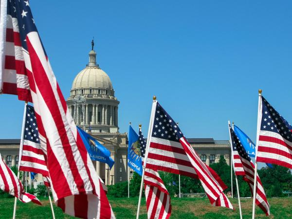 Capitol and lawn flags